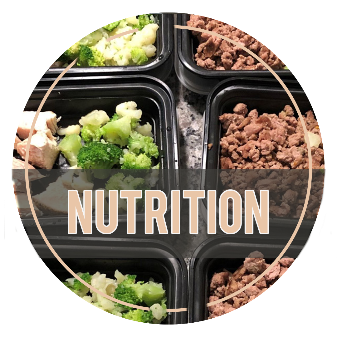 1nutrition